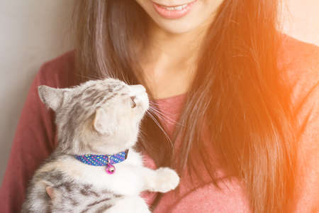 cute kittens: An Asian woman play with her kitten at home.