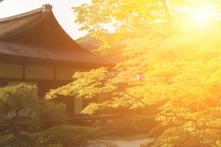 serene landscape: Green maple trees and Japanese-style house in the Japanese garden  of Ginkakuji Temple. Stock Photo