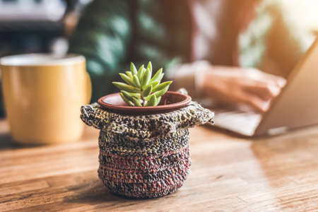 work table: concept of working at home with succulent plant pot on the table Stock Photo