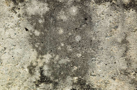 mildewed wall background, grunge texture of dirty cement wall Stock Photo