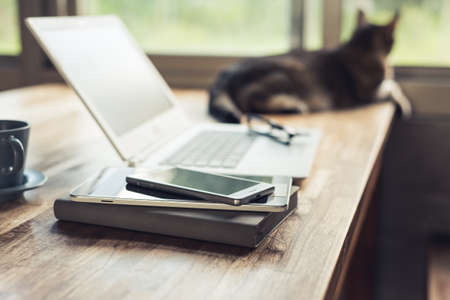 smart phone on the table with cat, concept of working at home