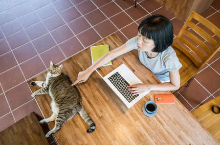 woman working at home with her cat lying on table Stockfoto