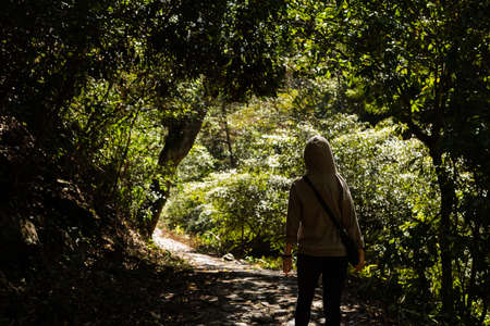 traveling Asian woman hiking at the outdoor in the forest Stock Photo