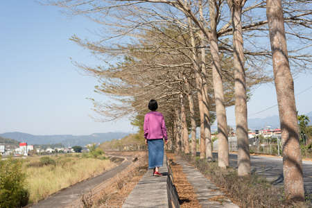 rear view of Asian woman walk under the tree in the outdoor