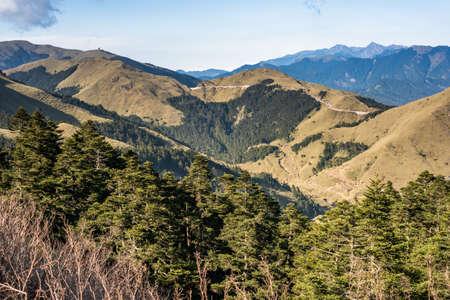 mountain scenery with trees and grassland in Mt. Hehuan(Hohuan) at Taroko National Park, Taiwan