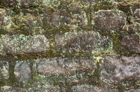 moisture aged cement brick wall background with good weathered texture 스톡 콘텐츠