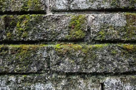 background of rough stone brick wall with lichen and moss