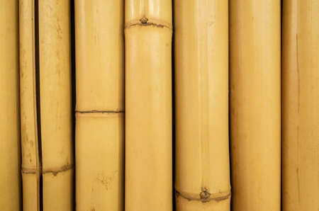yellow bamboo craft background with copyspace and nobody Foto de archivo
