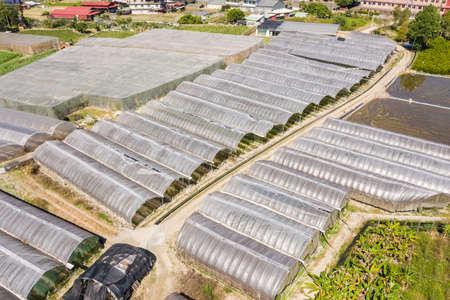 aerial view of greenhouse in Puli township, Nantou, Taiwan Stockfoto