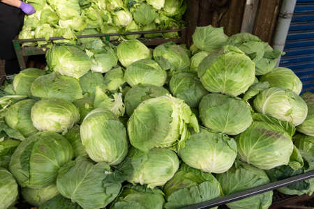 Cabbages on the table in a traditional marketplace in Taiwan Stockfoto