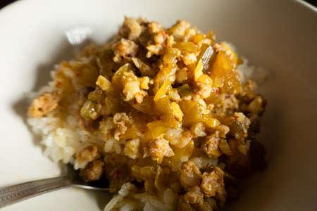 Taiwanese famous food of braised pork on rice, closeup image Stockfoto