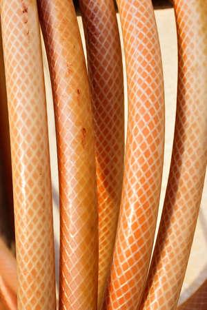 Coiled orange hose. Garden tools. Banque d'images