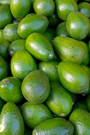 Avocados on a market Stock Photo - 11222610