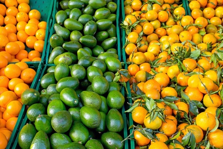 Tangerines and avocados Stock Photo - 11878150