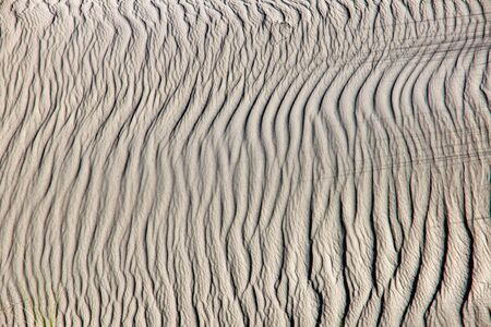A rippled sand dune photo