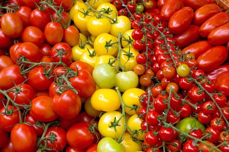 Background of some different kinds of tomatoes Imagens - 13750115