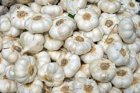 Lots of garlic bulbs on a market stall Stock Photo - 13909052