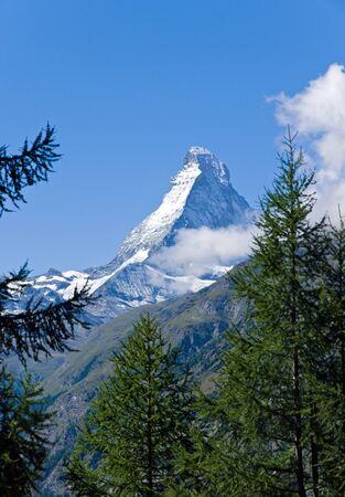 The Matterhorn behind some trees photo