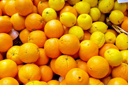 Oranges and lemons Stock Photo - 14128685