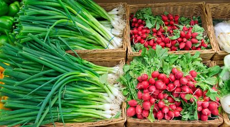 scallions: Scallions and radish Stock Photo