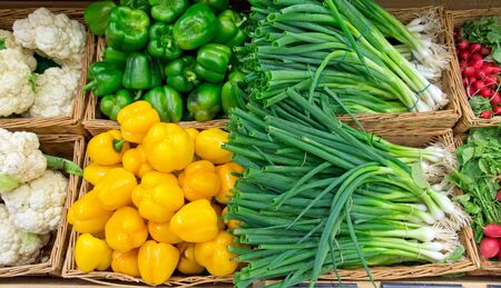 Scallions and pepper Stock Photo - 14892332