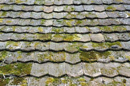 Old worn shingles photo