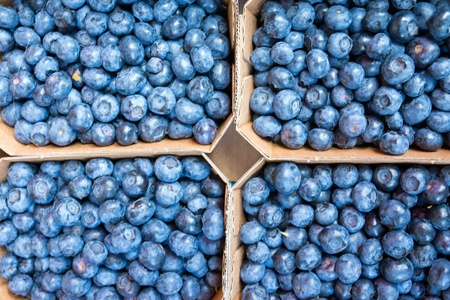 Fresh blueberries for sale at a weekly market Stock Photo - 17593668