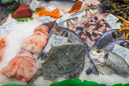 Fresh fish for sale at a market photo