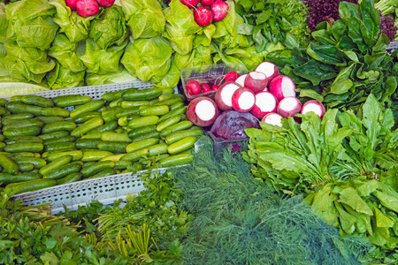 herbage: Herbage and salad for sale at a market Stock Photo