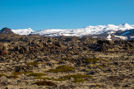 lava field: Lava field and snowy mountains at the Snaefellsnes peninsula in Iceland