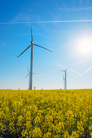 windfarms: Sunshine, rapeseed and windwheels seen in rural Germany Stock Photo