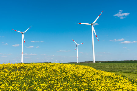 nonpolluting: Wind Wheels and yellow flowers seen in rural Germany Stock Photo