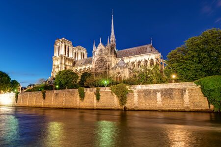 riverbank: The river Seine and Notre Dame cathedral in Paris at night