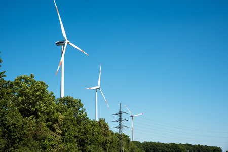 Wind power plants and trees lakes