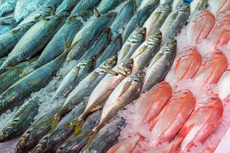 Fresh fish at a market in Madrid, Spain