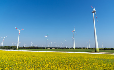 Yellow flourishing oilseed rape and lots of wind energy plants lakes in rural germany