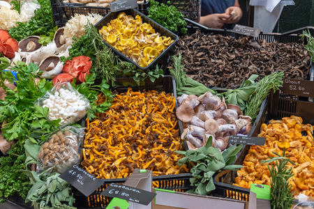 Different kinds of mushrooms at a market in London, UK