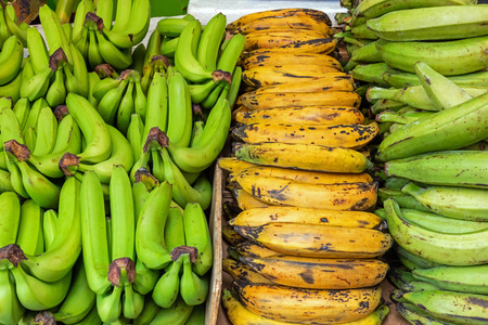 Different kinds of bananas at a market in Brixton, London