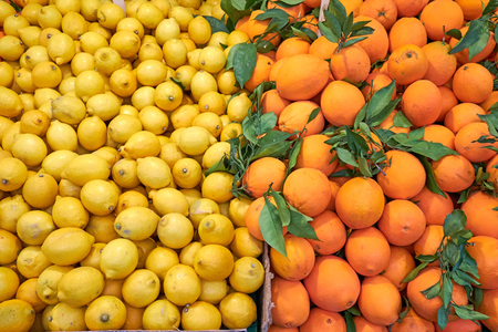 Tangerines and lemons for sale at a market