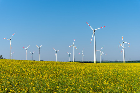 Flowering rapeseed with wind turbines in the back lake in Germany Stock Photo