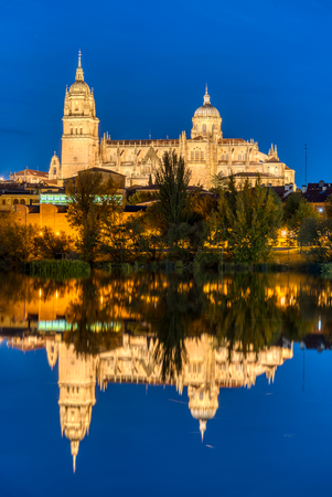 The Cathedral of Salamanca reflecting in the river Tormes at night