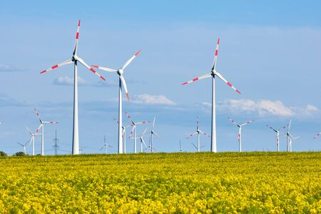 Wind turbines behind a flowering canola field lake in Germany Stock Photo