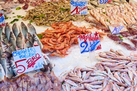 Fish and seafood for sale at the Porta Nolana market in Naples, Italy
