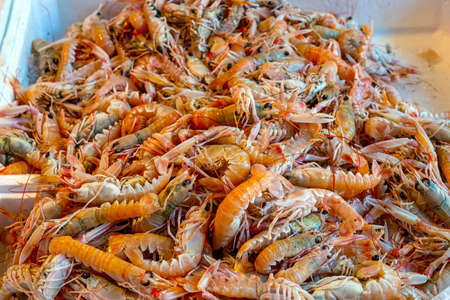 Fresh shrimps for sale at a market
