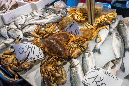 Fish and crustaceans for sale at a market Imagens