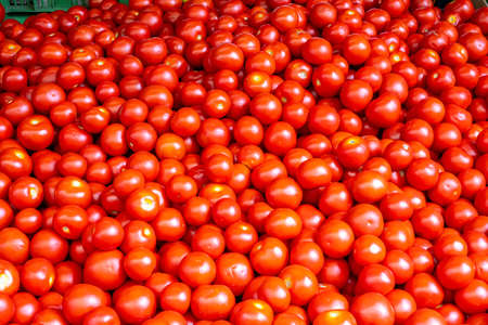 Heap of small red tomatoes for sale at a market