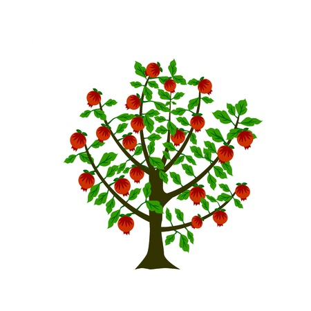 Pomegranate tree Ilustração