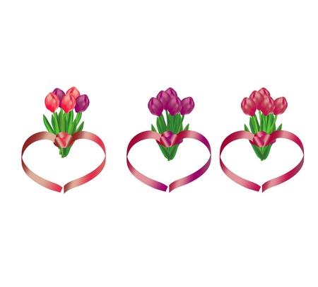 Tulip bouquets with heart shaped ribbons Stock Vector - 12843705