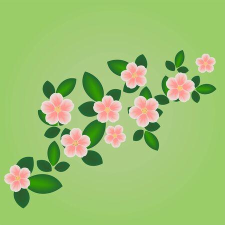 Spring blossom Stock Vector - 13105654