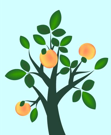 Fruit branch Stock Vector - 13105608